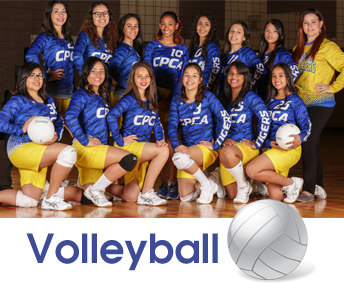 volleyballteam